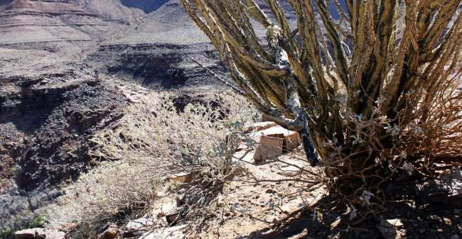 Passeio de helicóptero pelo Grand Canyon perto de Las Vegas - Paisagem 1