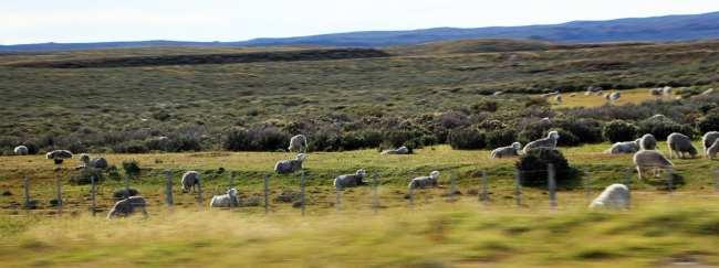 Review Hotel Tierra Patagonia - no caminho 3