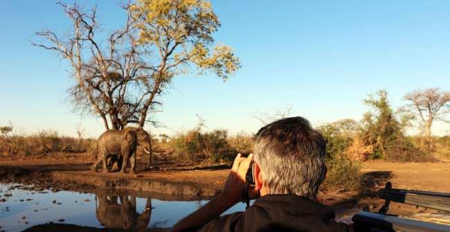 O que levar na mala África do Sul - elefante