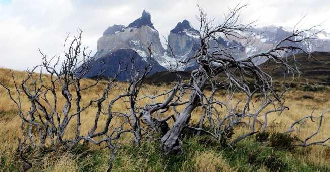 Torres del Paine Patagonia Chilena - Cuernos del Paine 2