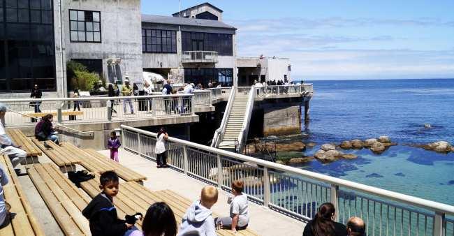 Road trip pela Califórnia de São Francisco a Monterey e Carmel - 7