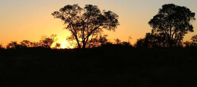 Como é fazer um safári na África do Sul - Madikwe Game Reserve 8
