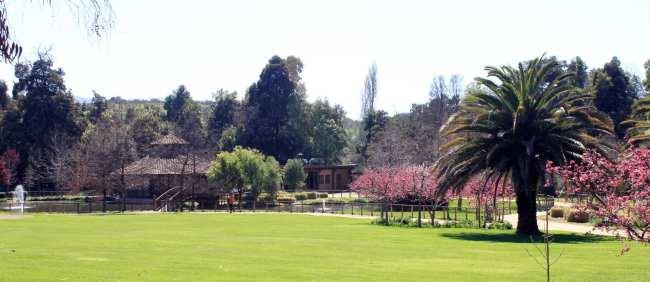 Vinícola Matetic perto de Santiago - 9