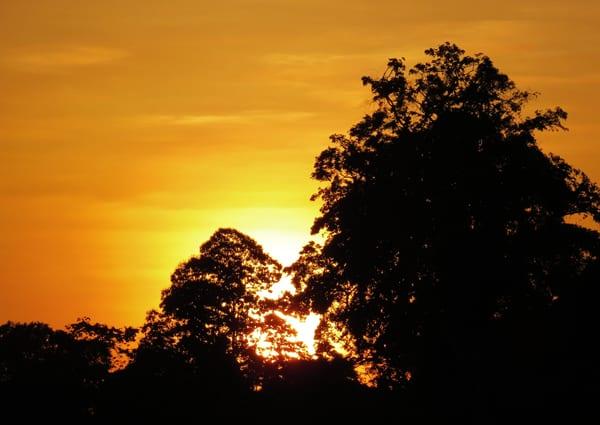 O sol se pondo. Boa noite