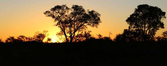 Onde ficar para fazer safári na África do Sul - Rhulani Safari Lodge 6