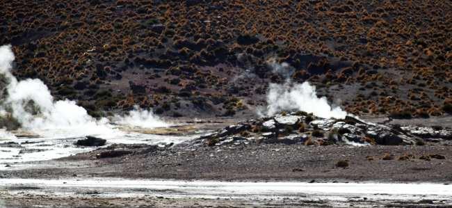 Passeios no Atacama - Gêiser de Tatio 19