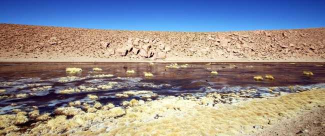 Passeios no Atacama - Gêiser de Tatio 22