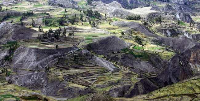 Tour pelo valle del Colca - Arequipa - 22
