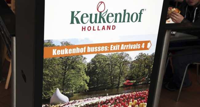 Como ir ao Keukenhof na holanda - jardim de tulipas perto de Amsterdã - 01