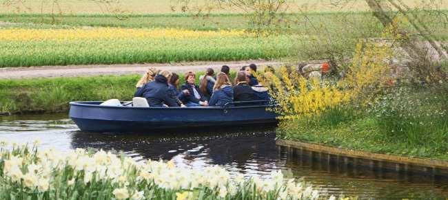 Como ir ao Keukenhof na holanda - jardim de tulipas perto de Amsterdã - 20