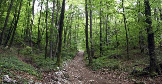 Seguro Viagem Mondial - vale a pena? - como comprar bled eslovenia 15
