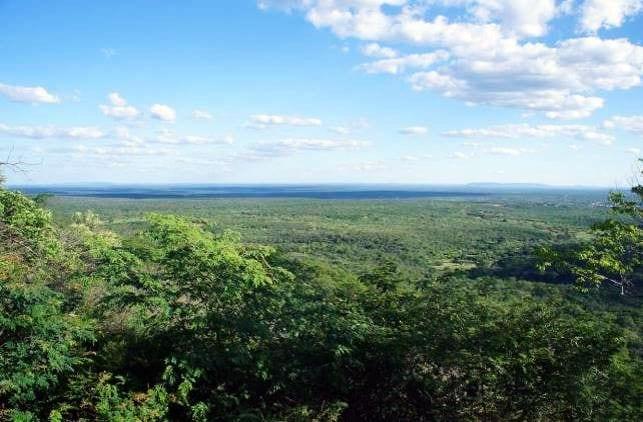 Serra da Capivara no Piauí - 09
