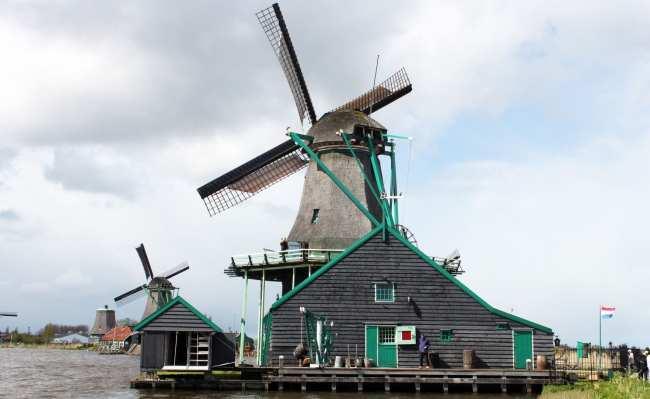 Bate e volta de Amsterdam: Zaanse Schans - 10