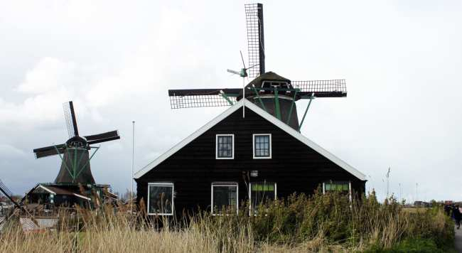 Bate e volta de Amsterdam: Zaanse Schans - 11