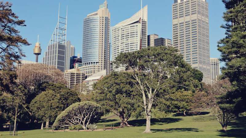 programas-imperdiveis-sydney-australia-jardim-botanico