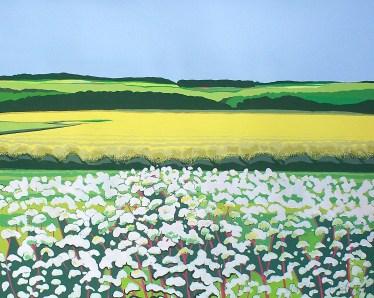 Janet Darley, Towards North