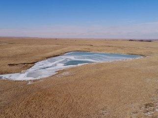 Flint Hills Pasture-Greenwood County, Kansas