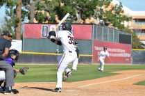 csun baseball player prepares to hit the ball