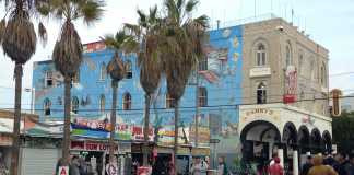 photo shows the Venus mural located in Venice beach