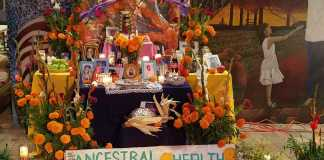 altar surrounded with orange flowers, pictures, and offerings