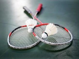 Badminton federation gets caretaker committee as court case halts election
