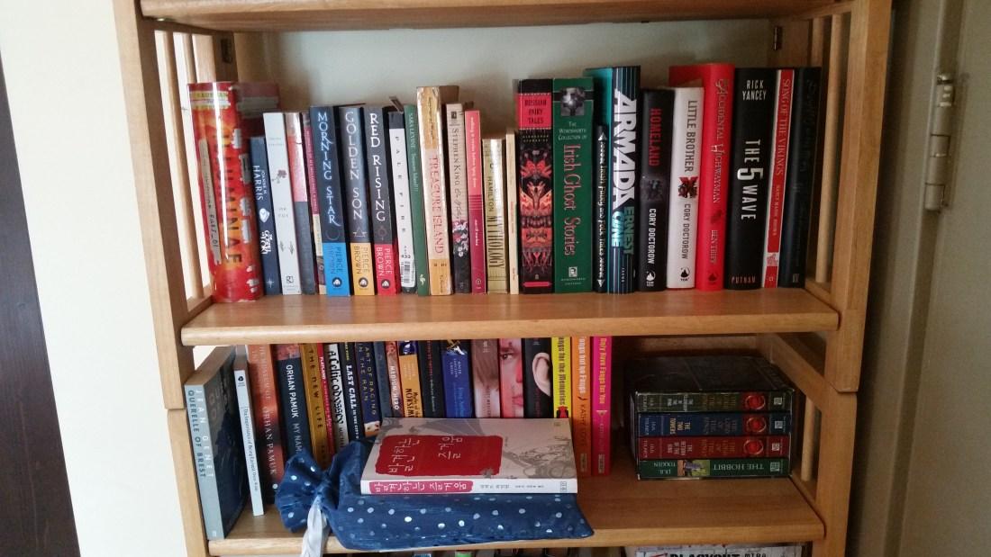 Tierney Bailey Bookshelf 2