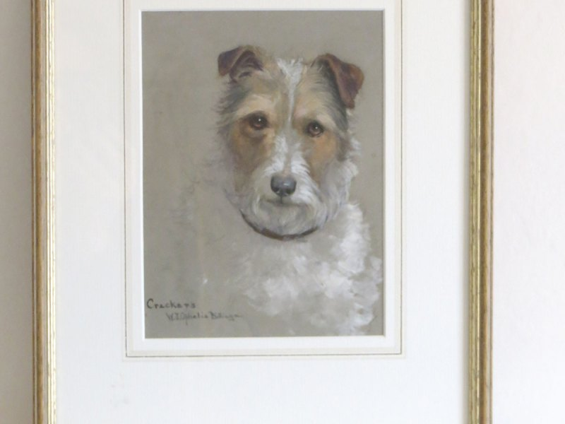 watercolour painting of a terrier by Ophilia Billinge