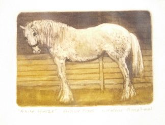 Valerie Christmas Shire Horse Etching