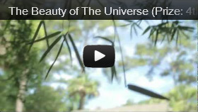The Beauty of the Universe (Prize: 4th Place)