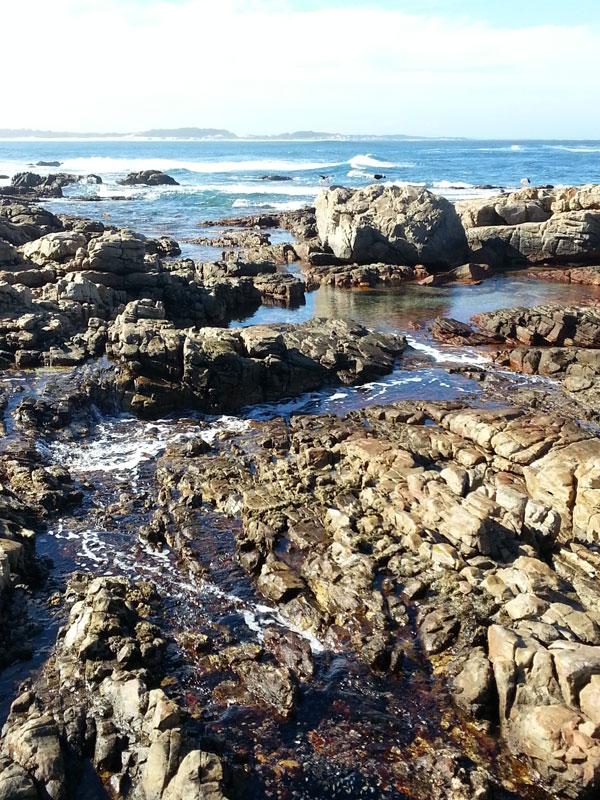 Rock-Pools-Cape-St-Francis
