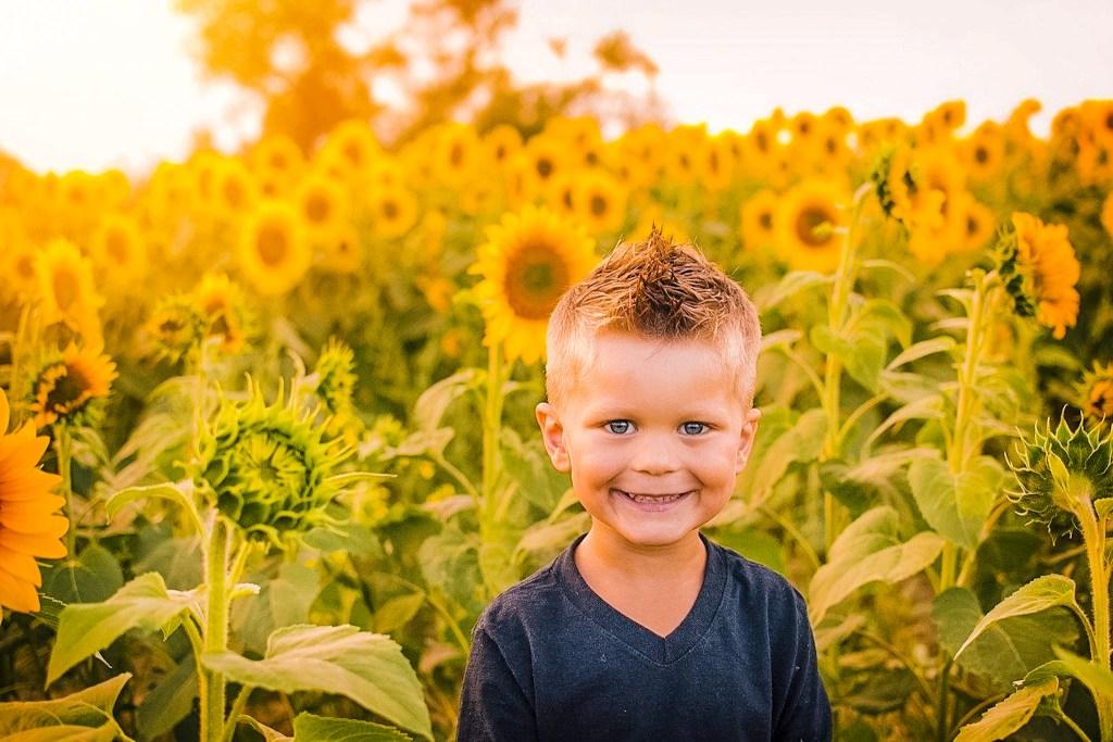 child sunflower field markham