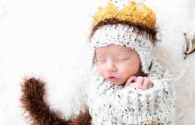Max – Newborn Portraits