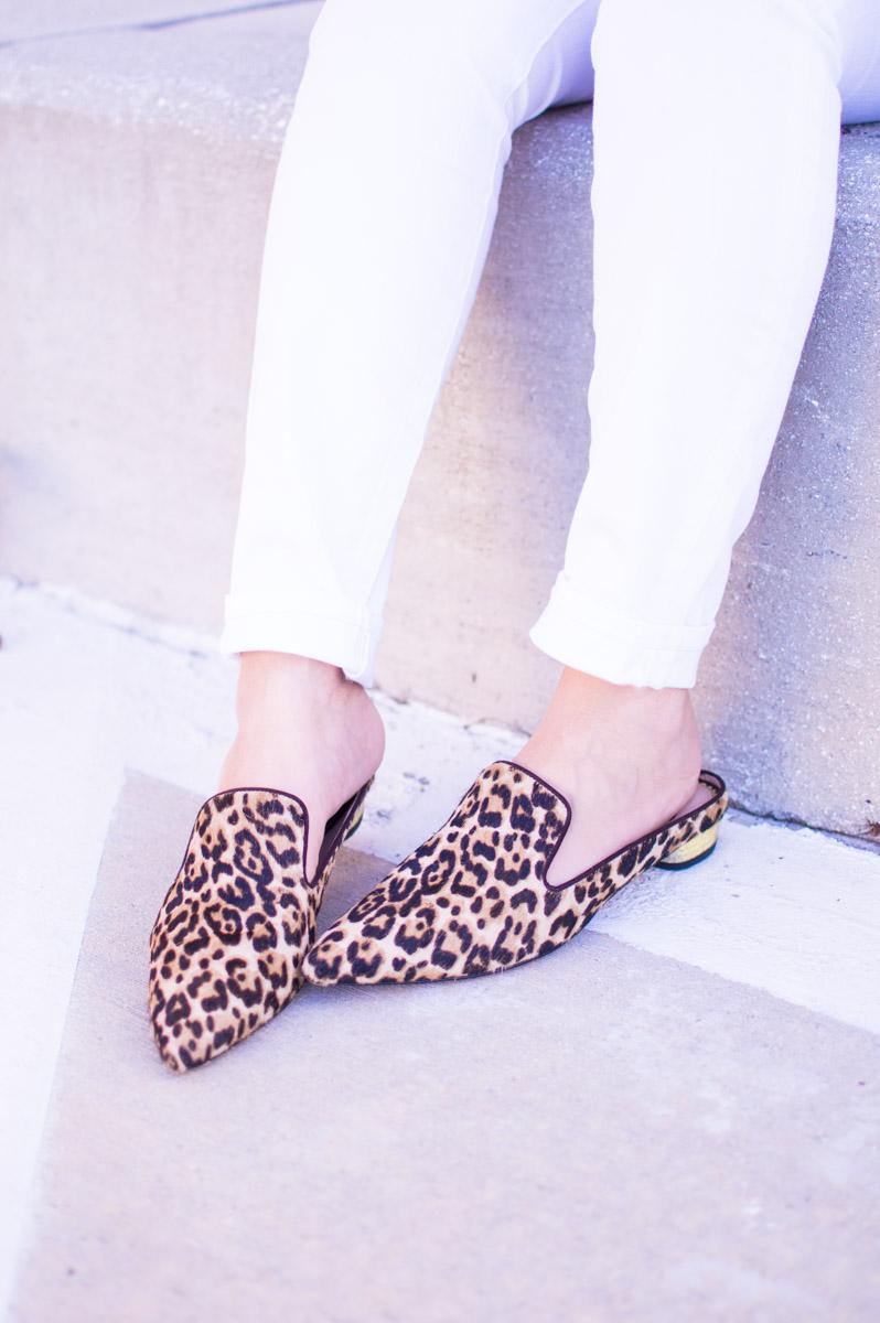 Sam Edelman leopard Augustine flats_pointed leopard flats_leopard mules_leopard slides