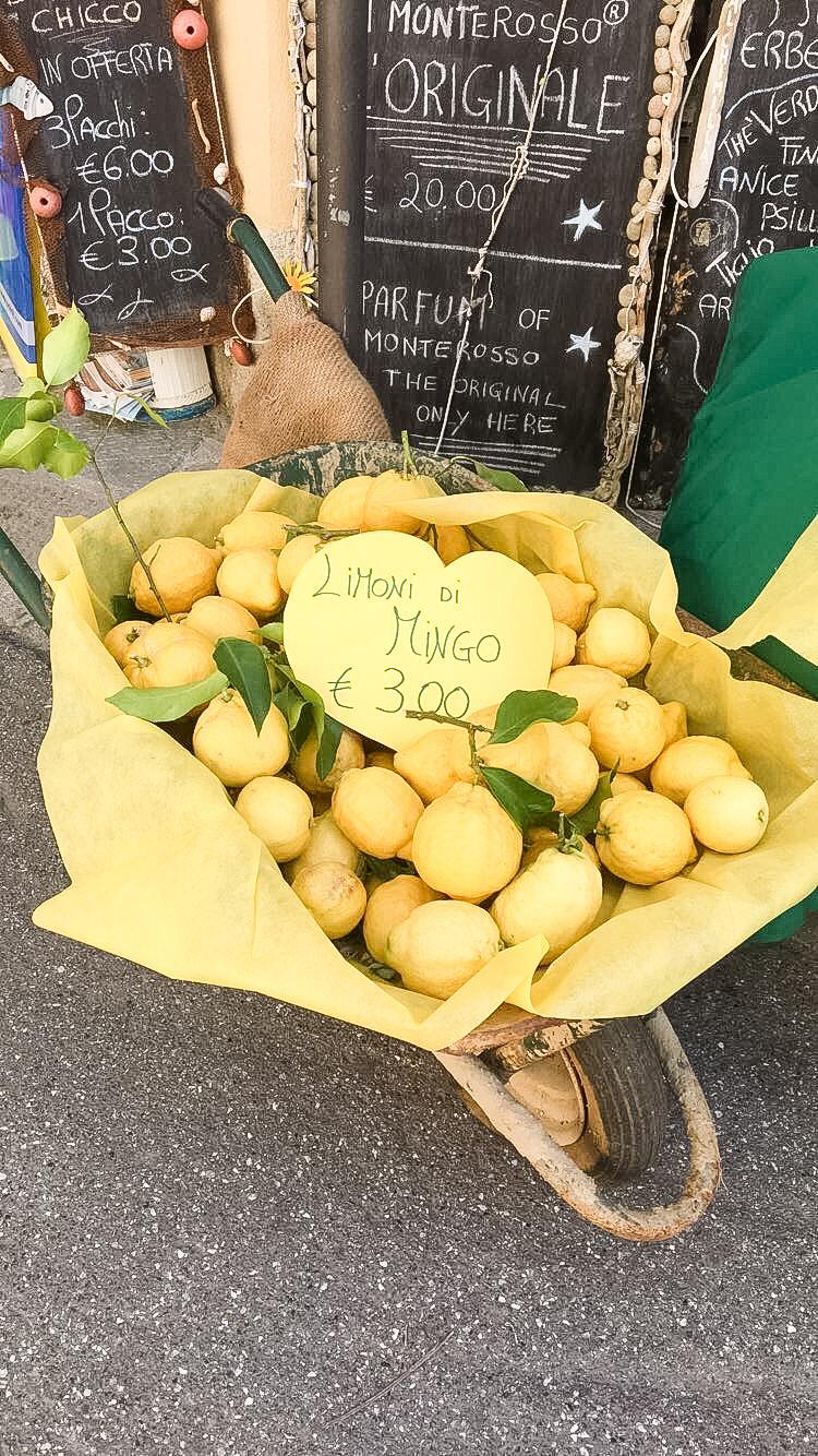 tuscany cinque terre lemon festival Monterosso