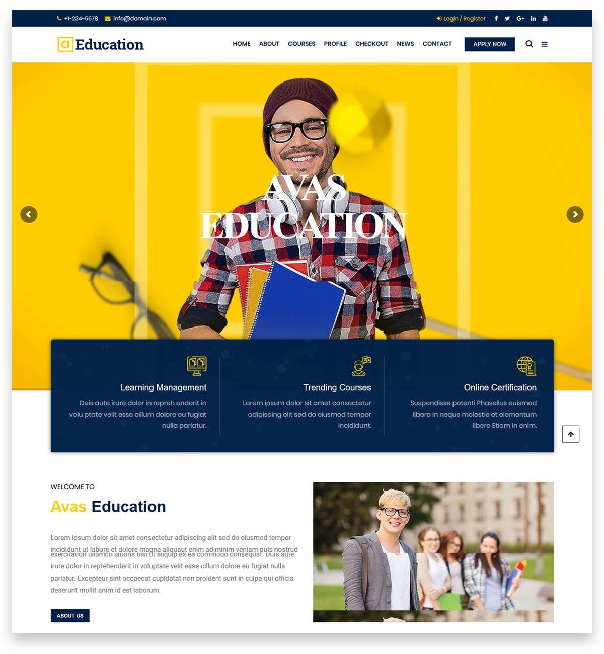 Avas | Multi-Purpose WordPress Theme for launching any types of website
