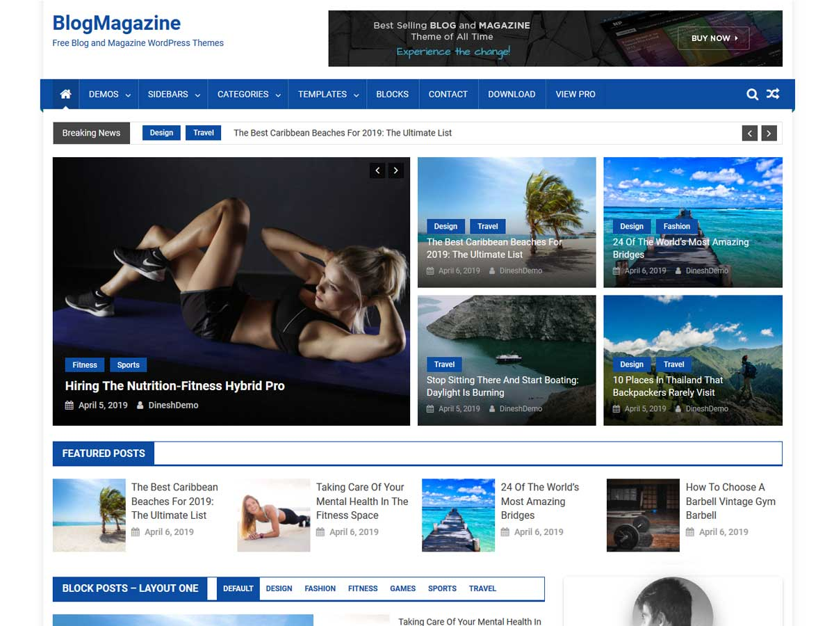 BlogMagazine theme is WordPress free magazine theme