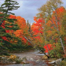 Carrabassett River in Carrabassett Valley, Maine by John Livoti
