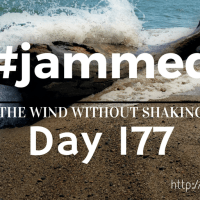 The Journal (#jammed daily devo, day 177)