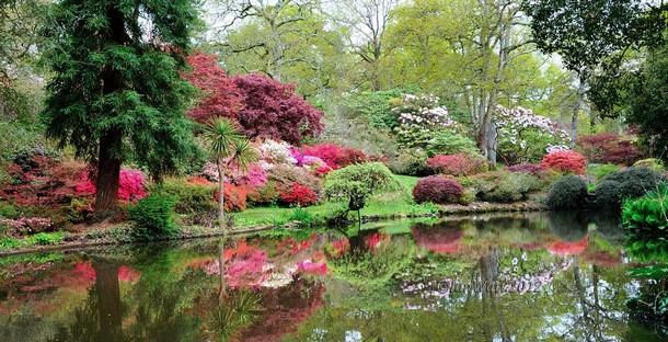 7-Exbury-Gardens_tn