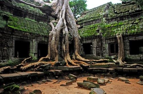 Angkor Wat, Cambodia_b