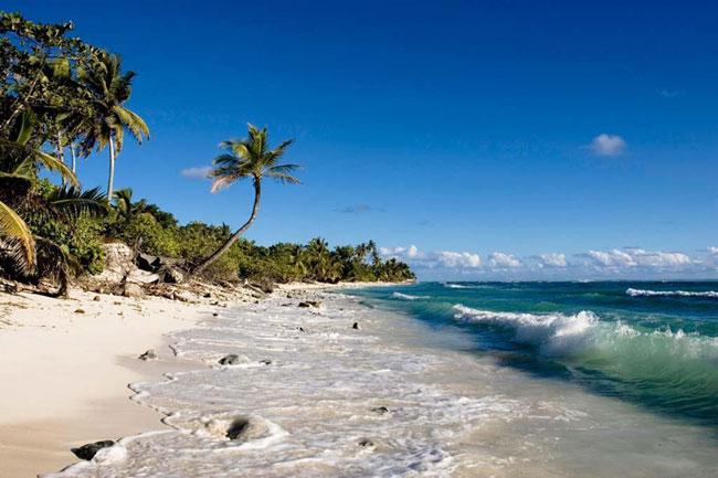 Beautiful beach 6