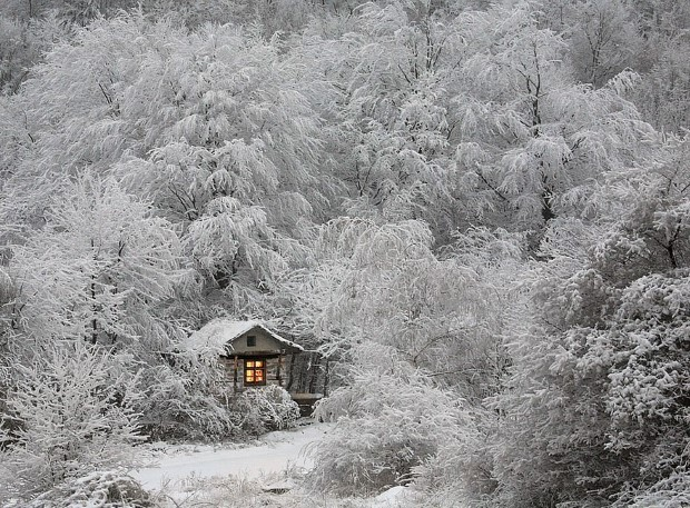 σπίτια στη μέση της φύσης6