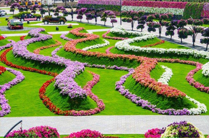 Marvelous-Dubai-Miracle-Garden-2
