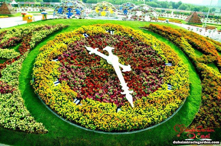 Marvelous-Dubai-Miracle-Garden-8