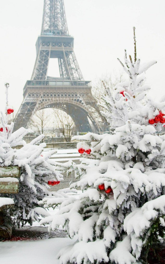 Paris In Winter, France