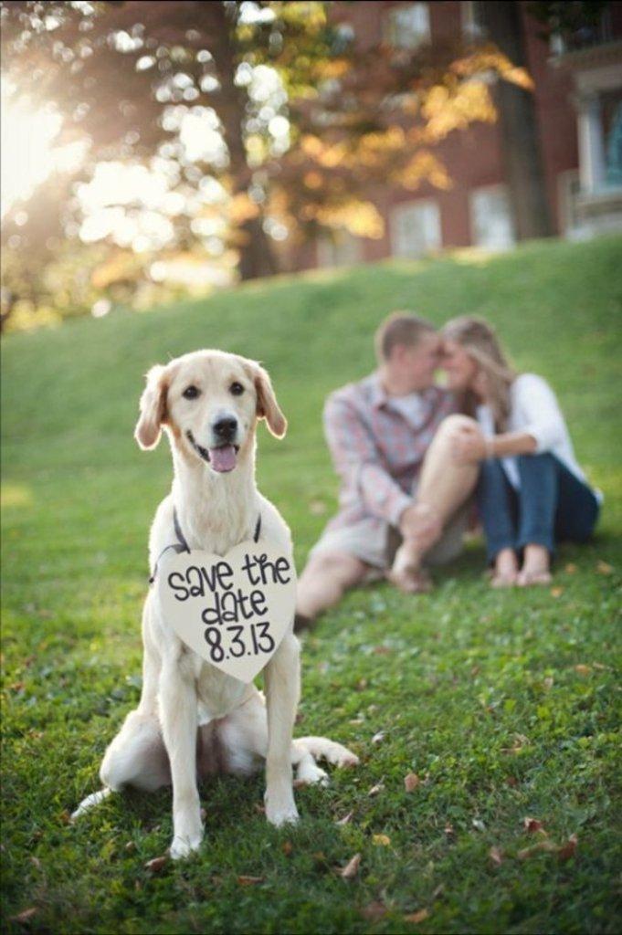 ιδέες φωτογράφισης γάμου34