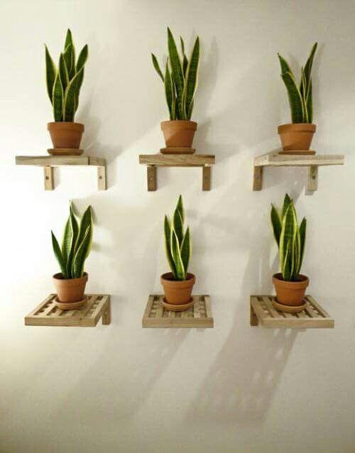 ιδέες διακόσμησης κάθετων επιφανειών με φυτά15