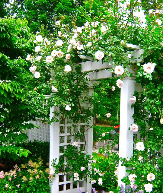 σχέδια εισόδου κήπου9