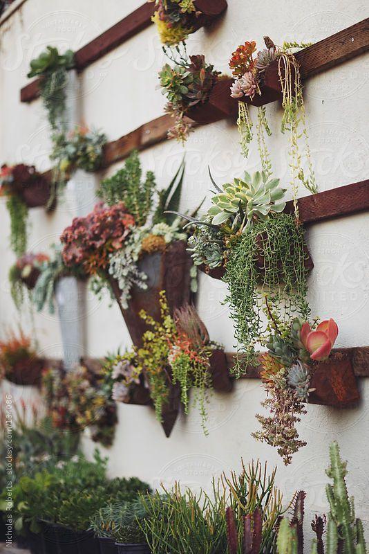 κάθετες ιδέες κηπουρικής7