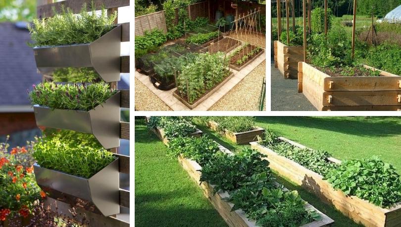 25 Έξυπνες DIY ιδέες για λαχανόκηπους σε μικρούς χώρους – σχεδιασμός για αρχάριους